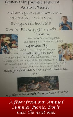 Annual Summer Picnic flyer